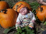 Pumpkin_shopping_008